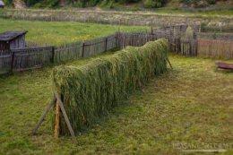 making-hay-11