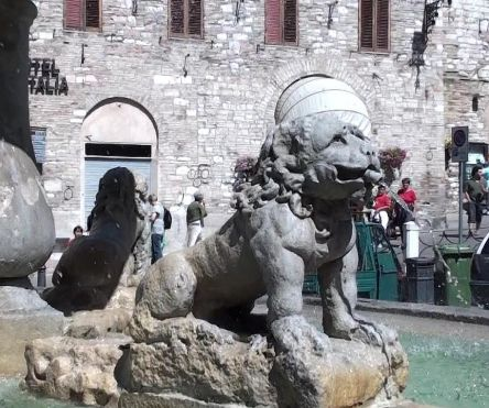 assisi lion