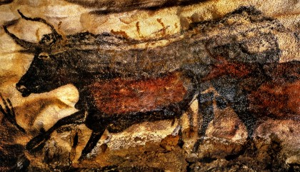 Axial Gallery lascaux_great black bull DM