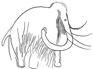 combarellesmammoth