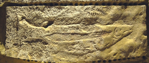 Sculpted_fish_on_roof_of_cave,_Abri_du_poison,_Dordogne,_#2